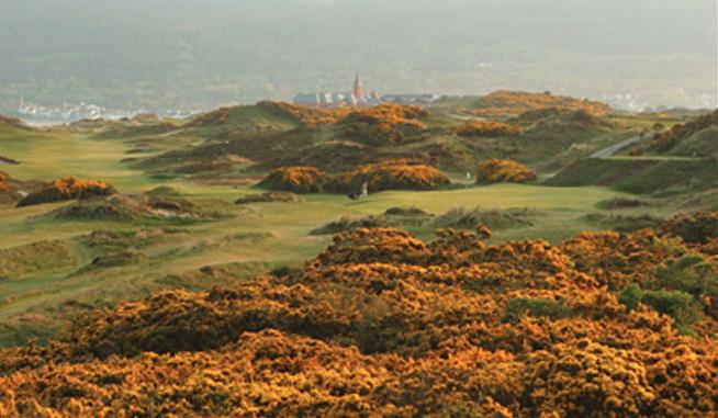 golfhull1